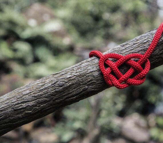 Ако обичате, борете се за любовта си
