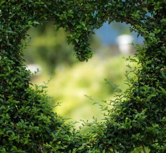 Любовта не идва по поръчка, но е някъде там!